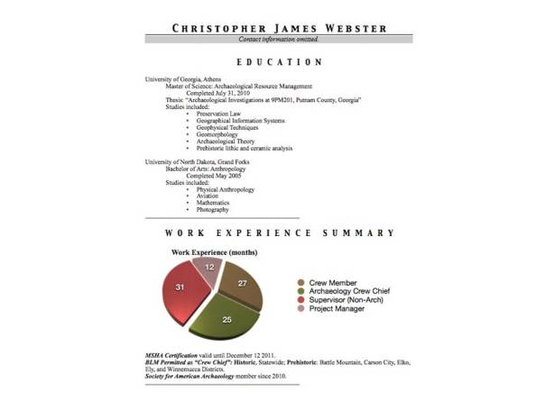 Chris Webster CV Example